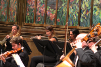 ORCHESTRA_OF_THE_SWAN_BELLAS_ARTES_SALA_PRINCIPAL_20161122_03