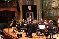 ORCHESTRA_OF_THE_SWAN_BELLAS_ARTES_SALA_PRINCIPAL_20161122_06